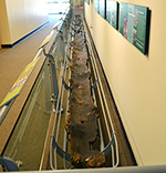 Historical Native American Dugout Canoe
